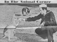 In the Animal Corner - Oct. 18, 1942 from New York Sunday News